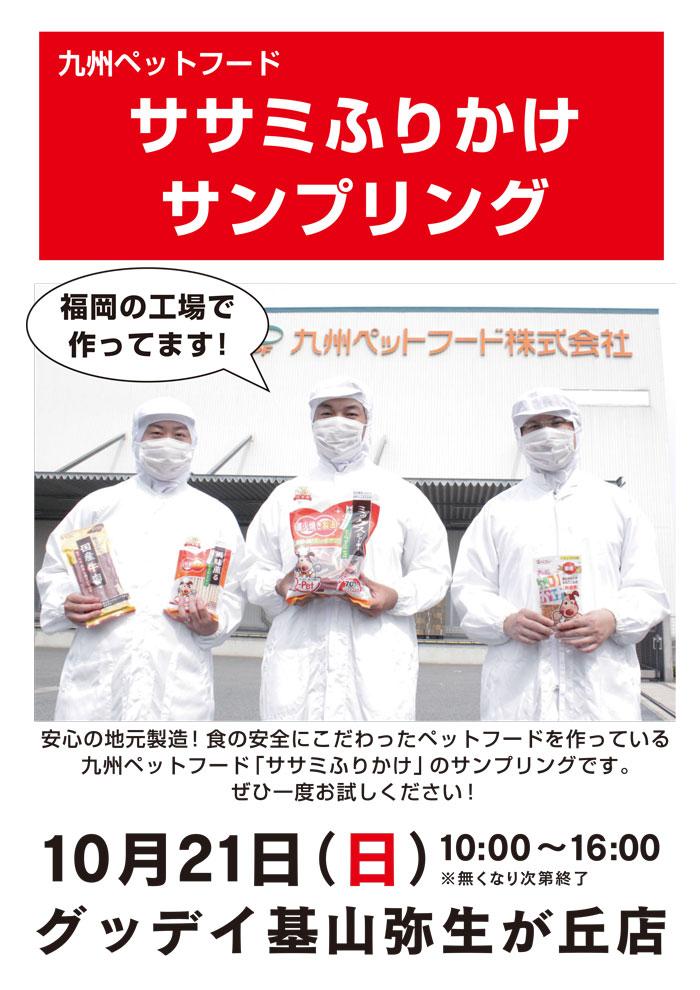 kiyama_pet_10.jpg