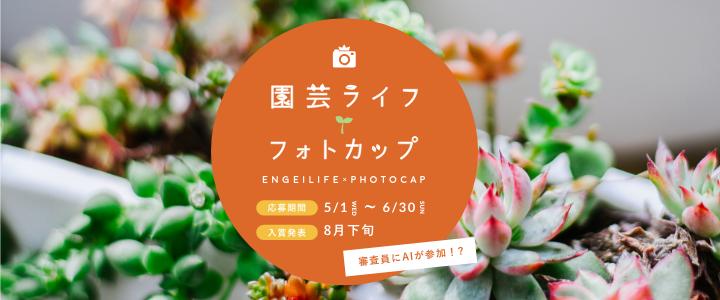 """寄せ植えコンテスト """"みんな""""の園芸ライフフォトカップ"""
