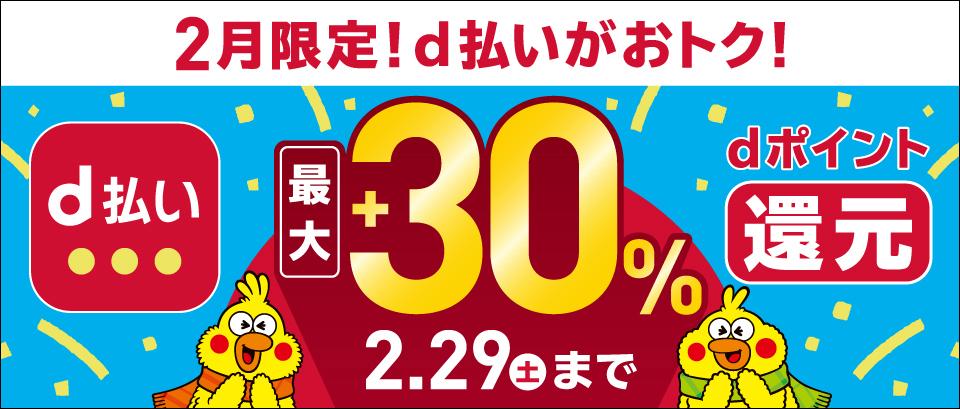 2月限定!d払いで最大30%還元キャンペーン!